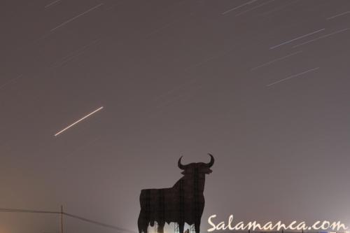 Y el toro esperando la Luna mientras pasaban las estrellas