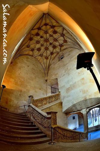 Una escalera mágica en las Escuelas Mayores