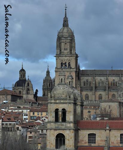 Salamanca... Alto soto de torres