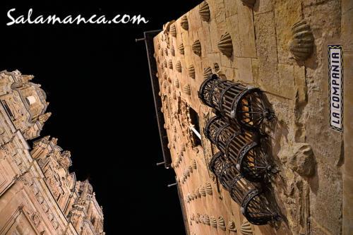 Salamanca, Conchas en Compañía