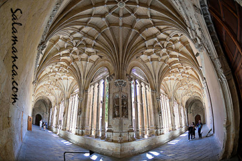 Salamanca y sus claustros con encanto... San Esteban (2/2)