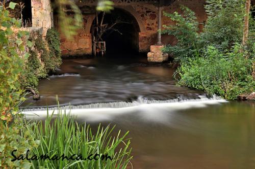 Salamanca, agua pasada no mueve molino... El Tormes tras dejar la Fábrica de Harinas