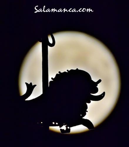 León de San Marcos... Mirándose en la Luna