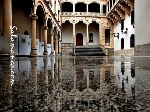 Palacio de La Salina, pasado por agua