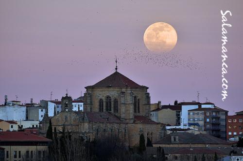 Salamanca y esa Luna del Lobo