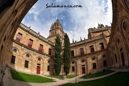 Un claustro nuevo para una Catedral Vieja