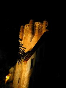 salamanca-torre-del-clavero-0