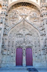 mono-encadenado-catedral-nueva-salamanca-1
