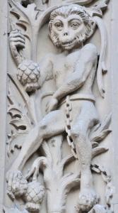 mono-encadenado-catedral-nueva-salamanca-2