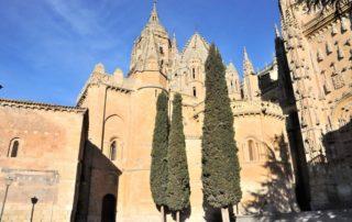 Catedral Vieja Salamanca
