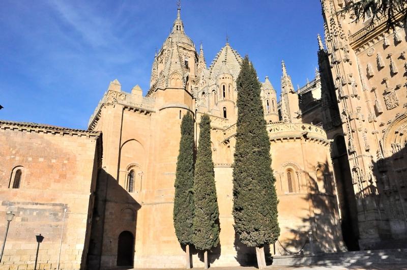 Catedral Vieja, Salamanca.