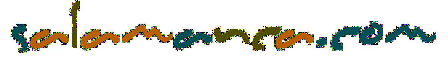 Salamanca.com Retina Logo