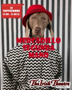 The Irish Theatre Mercadillo de Segunda Mano Salamanca Septiembre 2018