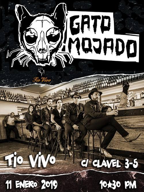 Tío Vivo Gato Mojado Salamanca Enero 2019